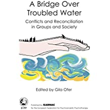 A Bridge Over Troubled Water: Conflicts and Reconciliation in Groups and Society (The EFPP Monograph Series)