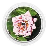 2x Rose - Sticker Aufkleber für FreeStyle Libre Sensor