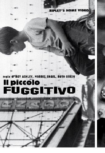 il-piccolo-fuggitivo-italia-dvd