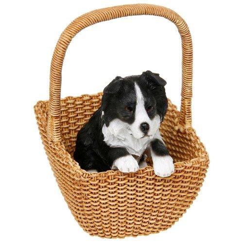 Border Collie Puppy in basket Dog ornamento-Mischief