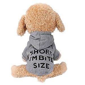 Vetement Chien/Chat Angelof Sweat A Capuche Chiot Manteau Lettre Sweatshirt Chien Habits Hiver Chaud Pour Petite Chiens Imprimé Veste T Shirt Chihuahua