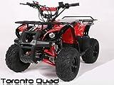 Toronto 125cc RG 7' Automatik + RG | MIDI QUAD (Blau)