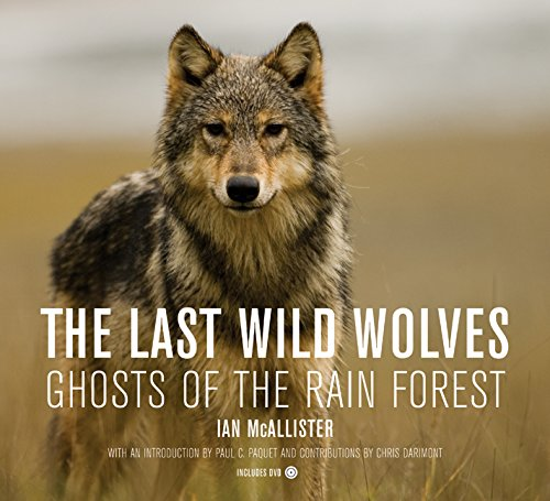 The Last Wild Wolves: Ghosts of the Rain Forest