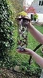 Opus [Perky-Pet] 550 Comedero para pájaros con...