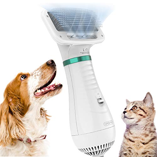 DADYPET Asciugacapelli per Cane, 2 in 1 Pet Grooming Asciugacapelli Cane Slicker Brush per Cani di Piccola Taglia Media