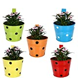 #4: TrustBasket Set of 5 - Single Pot Railing Planter - Red,Yellow,Blue,Orange,Green