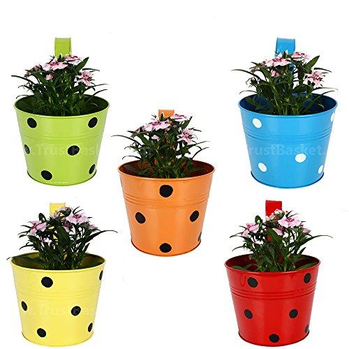 TrustBasket Set of 5 - Single Pot Railing Planter - Red,Yellow,Blue,Orange,Green