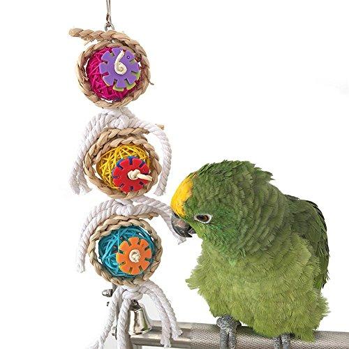 SOMESUN Vögel Haustier Vogel Papagei Schaukel Käfig Spielzeug Kauen Bites für Sittich Nymphensittich Kakadu Conure