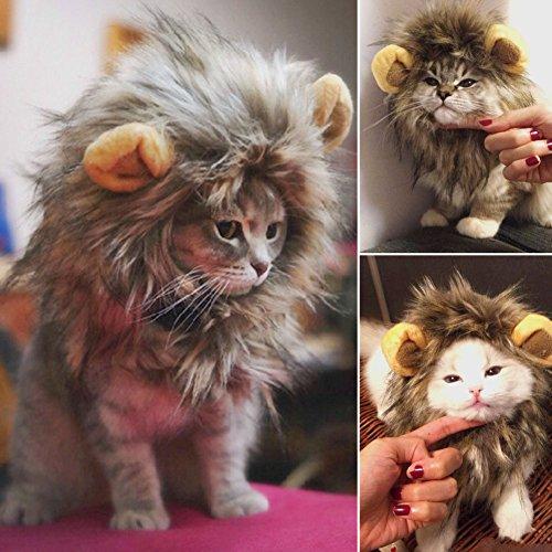 Kostüm für Katze Hund Lustiges Weihnachten mit Halloween-Dekor-Mähnen-Hut Haustier Kleid Versorgung ()