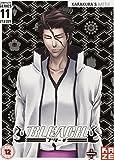 Bleach: Complete Series 11 [DVD]