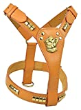 Avon Pet Products Staff Bull Terrier Messing Nieten Leder Harness