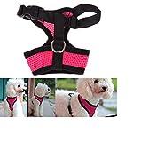 Gesunde Clubs weichem Mesh-Stoff Puppy Dog Pet Verstellbare Hundegeschirr Hunde Brustgeschirr Zum Joggen Hot Pink