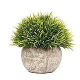 EPCTEK Künstliche Faux Töpfe Pflanzen Mini Kunststoff Fälschung Grünes Gras für Home Decor Office(GRÜN)