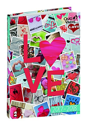 Quo Vadis Academic Diary with Page per Day Love & Peace Sept to Sept 2013 to2014,12 x 17 cm [cannot guarantee English] 12 x 17