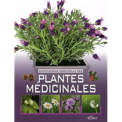 Encyclopedie Essentielle Des Plantes Medicinales Pdf Download Free Brendanmeredith
