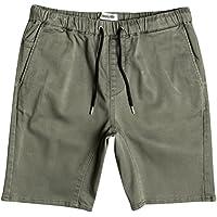 Quiksilver Herren Fonic Shorts