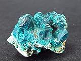 The Russian Stone Il Russo Pietra Dioptase Dioptaze Cluster dal Congo–3.3cm