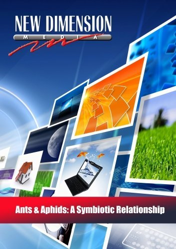 ants-aphids-a-symbiotic-relationship-by-new-dimension-media