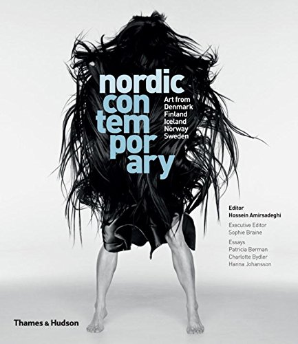 Nordic Contemporary: Art from Denmark, Finland, Iceland, Norway and Sweden par Hossein Amirsadeghi/Sophie Braine