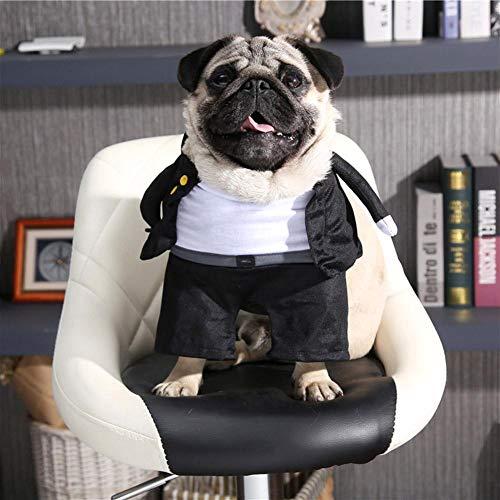 Jspoir Melodiz 1pc Halloween Kostüme für Haustier Pet Halloween Dress up Pet Kellner Stil Kleidung Halloween Ideen zu transformieren - Der Floh Kostüm