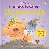 Big Pig on a Dig (Phonics Readers) (Usborne Phonics Readers)