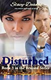 Disturbed  (The Bruised Series Book 3)