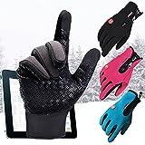 Touchscreen Handschuhe Herren Damen - Winter Outdoor Sport Fahrradhandschuhe Männer Frauen Wasserdicht Skihandschuhe Winterhandschuhe Blau M Highdas