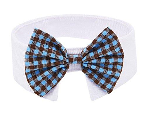 Toruiwa 1X Fliege Haustier Hund Katze Bowtie Einstellbare Krawatte Kragen Hunde Katzen Halsband Dekoration Bow Tie Collar (Blau) -