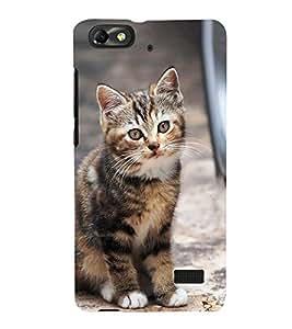 PrintVisa Cute Cuty Cat 3D Hard Polycarbonate Designer Back Case Cover for Huawei Honor 4C :: Huawei G Play Mini