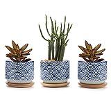 T4U 7CM Pot de Succulente avec Plateau Bambou Lot de 3, Cactus Plante Planteur de Céramique Petite Cache Pot Jardinière...