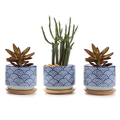 T4U 7CM Macetas para Cactus de Cerámica con Plato de Bambú Paquete de 3, Pequeña Maceteros Pequeños para Suculento Plantas Casa y Jardin Boda Decorativos Interior