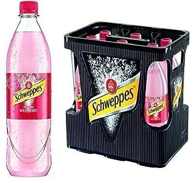 Schweppes Russian Wild Berry 6er 1Liter PET (6 x 1l Flasche)