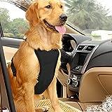EAST-BIRD Safety Dog Weste Gurt mit Sicherheitsgurt für die Meisten Auto, Reisen Weste mit Auto Sicherheitsgurt Leine Verstellbar Leicht und Bequem