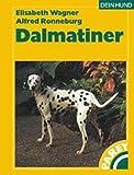 Der Dalmatiner: Praktische Ratschläge für Haltung, Pflege und Erziehung