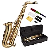 Windsor Alto Saxophone Includes Hard Case - Gold Lacquer Finish