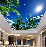 Xcmb Deckenpaneele Der Kundenspezifischen Tapete 3D, Blauer Himmel Wohnzimmerdeckenwohnung-Hotelhintergrundwand Vinyl-250Cmx175Cm