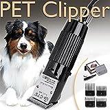 Clipper Per Cani Elettrici Guide Per Rasatura A Basso Rumore Ricaricabili A Basso Rumore Per Animali Domestici