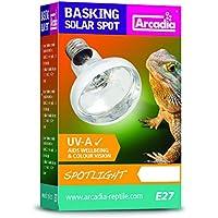 Arcadia sbs75Basking Solar lámpara UVA Spotlight