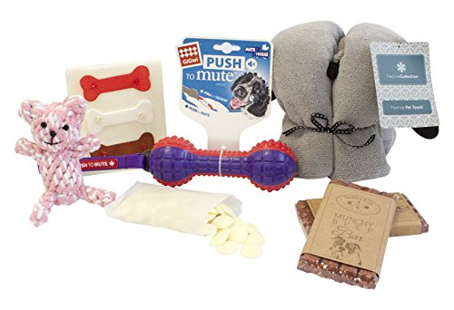 Pet Brands Girl Easter Gift Hamper for Dog