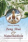 Feng-Shui & Naturmedizin. 8 Faktoren für Ihre Gesundheit