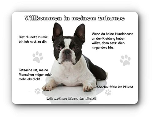 Merchandise for Fans Blechschild/Warnschild/Türschild - Aluminium - 15x20cm - Willkommen in Meinem Zuhause - Motiv: Boston Terrier schwarz/weiß liegend - 04 -