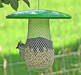 La meilleure mangeoire pour oiseaux sauvages afin d'en attirer plus, remplissez-la avec des graines de tournesol noir, des arachides et des boulettes de suif. Facile à installer, nettoyer et remplir, il s'agit du cadeau parfait pour les amis et la famille ! (Vert)