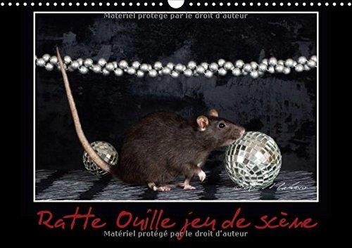ratte-ouille-jeu-de-scene-calendrier-mural-2018-din-a3-horizontal-petite-ratte-en-spectacle-calendri