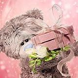 Me To You Tatty Teddy mit 3D-Hologramm-Motiv, Bär, verpackt, Geschenk