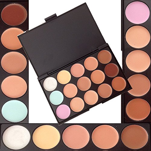 LyDia� 15 Colours Cream Concealer/Highlight/Face Contour Camouflage Palette Dull/Redness Skin/Black Circle kit set + LyDia� Red Hot Pink-1049 Flat Angled Makeup Brush #1