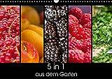 5 in 1 - aus dem Garten (Wandkalender 2019 DIN A3 quer): 5 Details in einem Bild (Monatskalender, 14 Seiten ) (CALVENDO Lifestyle)