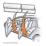 Einstiegsleisten Türeinstiege OHNE Ausschnitt für Dekoreinlagen passend für Dacia Sandero II / Dacia Sandero Stepway 2 (ab BJ 2012) - TRANSPARENT
