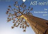 Astrein! - Der Baumkalender 2019 (Wandkalender 2019 DIN A4 quer): Bäume aus verschiedenen Perspektiven in 12 hochwertigen Fotografien (Monatskalender, 14 Seiten ) (CALVENDO Natur)