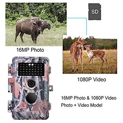 "BlazeVideo 16MP HD Trail Hunting Wildlife Camera, Hunter Scouting Game Camera Motion Sensor Activated Waterproof with Night Vision 40pcs IR LEDs Up to 65ft, Video Record, Snapshot, 2.36"" LCD Screen"