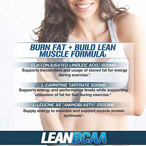 51G94%2BCLkvL. SS500  - Evlution Nutrition LeanBCAA, BCAA's, CLA and L-Carnitine, Stimulant-Free, Recover and Burn Fat, Sugar and Gluten Free…
